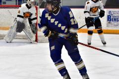 CIACT Ice Hockey D3 QFs; #1 Hand 5 vs. #8 Newtown 0 - Photo # 744