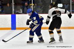 CIACT Ice Hockey D3 QFs; #1 Hand 5 vs. #8 Newtown 0 - Photo # 753