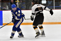 CIACT Ice Hockey D3 QFs; #1 Hand 5 vs. #8 Newtown 0 - Photo # 754