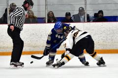 CIACT Ice Hockey D3 QFs; #1 Hand 5 vs. #8 Newtown 0 - Photo # 757