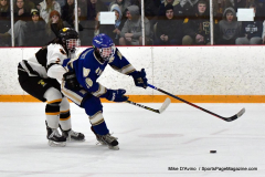 CIACT Ice Hockey D3 QFs; #1 Hand 5 vs. #8 Newtown 0 - Photo # 793