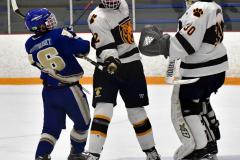 CIACT Ice Hockey D3 QFs; #1 Hand 5 vs. #8 Newtown 0 - Photo # 797