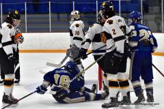 CIACT Ice Hockey D3 QFs; #1 Hand 5 vs. #8 Newtown 0 - Photo # 801