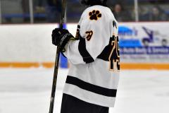 CIACT Ice Hockey D3 QFs; #1 Hand 5 vs. #8 Newtown 0 - Photo # 802