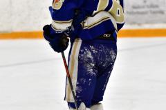 CIACT Ice Hockey D3 QFs; #1 Hand 5 vs. #8 Newtown 0 - Photo # 803