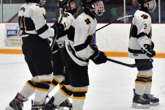 CIACT Ice Hockey D3 QFs; #1 Hand 5 vs. #8 Newtown 0 - Photo # 806