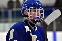 CIACT Ice Hockey D3 QFs; #1 Hand 5 vs. #8 Newtown 0 - Photo # 810