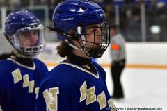 CIACT Ice Hockey D3 QFs; #1 Hand 5 vs. #8 Newtown 0 - Photo # 814