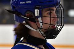 CIACT Ice Hockey D3 QFs; #1 Hand 5 vs. #8 Newtown 0 - Photo # 815