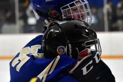 CIACT Ice Hockey D3 QFs; #1 Hand 5 vs. #8 Newtown 0 - Photo # 833