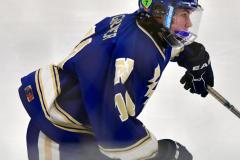 CIACT Ice Hockey D3 QFs; #1 Hand 5 vs. #8 Newtown 0 - Photo # 856