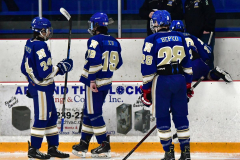 CIACT Ice Hockey D3 QFs; #1 Hand 5 vs. #8 Newtown 0 - Photo # 863