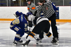 CIACT Ice Hockey D3 QFs; #1 Hand 5 vs. #8 Newtown 0 - Photo # 872
