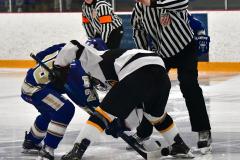 CIACT Ice Hockey D3 QFs; #1 Hand 5 vs. #8 Newtown 0 - Photo # 873