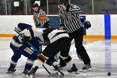CIACT Ice Hockey D3 QFs; #1 Hand 5 vs. #8 Newtown 0 - Photo # 874