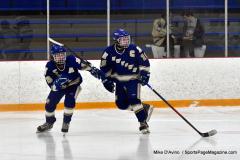 CIACT Ice Hockey D3 QFs; #1 Hand 5 vs. #8 Newtown 0 - Photo # 883