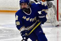 CIACT Ice Hockey D3 QFs; #1 Hand 5 vs. #8 Newtown 0 - Photo # 884