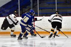 CIACT Ice Hockey D3 QFs; #1 Hand 5 vs. #8 Newtown 0 - Photo # 887