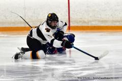 CIACT Ice Hockey D3 QFs; #1 Hand 5 vs. #8 Newtown 0 - Photo # 892