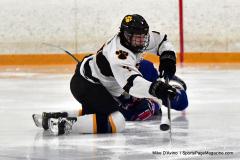 CIACT Ice Hockey D3 QFs; #1 Hand 5 vs. #8 Newtown 0 - Photo # 893