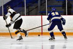CIACT Ice Hockey D3 QFs; #1 Hand 5 vs. #8 Newtown 0 - Photo # 896
