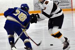 CIACT Ice Hockey D3 QFs; #1 Hand 5 vs. #8 Newtown 0 - Photo # 899