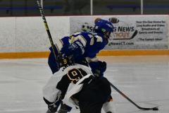 CIACT Ice Hockey D3 QFs; #1 Hand 5 vs. #8 Newtown 0 - Photo # 901