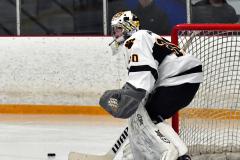 CIACT Ice Hockey D3 QFs; #1 Hand 5 vs. #8 Newtown 0 - Photo # 902