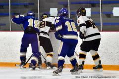 CIACT Ice Hockey D3 QFs; #1 Hand 5 vs. #8 Newtown 0 - Photo # 913