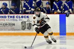 CIACT Ice Hockey D3 QFs; #1 Hand 5 vs. #8 Newtown 0 - Photo # 923