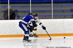 CIACT Ice Hockey D3 QFs; #1 Hand 5 vs. #8 Newtown 0 - Photo # 931