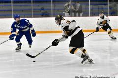 CIACT Ice Hockey D3 QFs; #1 Hand 5 vs. #8 Newtown 0 - Photo # 945