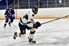 CIACT Ice Hockey D3 QFs; #1 Hand 5 vs. #8 Newtown 0 - Photo # 955