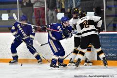 CIACT Ice Hockey D3 QFs; #1 Hand 5 vs. #8 Newtown 0 - Photo # 976
