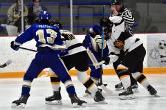 CIACT Ice Hockey D3 QFs; #1 Hand 5 vs. #8 Newtown 0 - Photo # 988