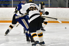 CIACT Ice Hockey D3 QFs; #1 Hand 5 vs. #8 Newtown 0 - Photo # 996