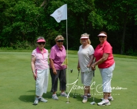 2017 Seymour Pink Golf Tournament (72)