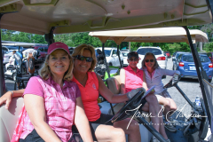 2018 Seymour Pink Golf Tournament - Gallery 1 of 3 - Photo (8)