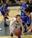 Gallery Amateur Basketball; North End Rec White 4 vs. North End Rec Blue 6 - Photo # 001 (35)