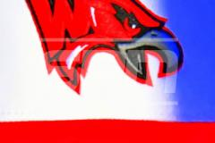 CIAC BASE; Class M Finals - Wolcott vs. St. Joseph - Photo # 040
