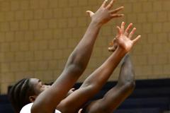 CIAC Boys Basketball; Crosby 85 vs. Kennedy 66 - Photo # 184