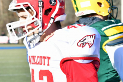 Gallery CIAC Football; Holy Cross vs. Wolcott - Photo # 3218