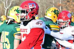 Gallery CIAC Football; Holy Cross vs. Wolcott - Photo # 3223