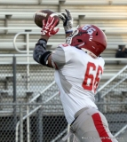 Gallery CIAC Football; Watertown vs. Wolcott - Pregame - Photo # (182)