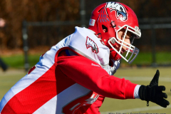 Gallery CIAC Football; Holy Cross vs. Wolcott - Photo # 096