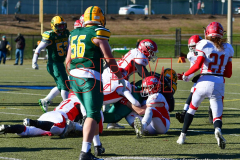 Gallery CIAC Football; Holy Cross vs. Wolcott - Photo # 1153