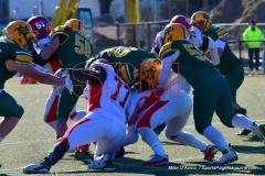 Gallery CIAC Football; Holy Cross vs. Wolcott - Photo # 1164