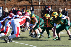 Gallery CIAC Football; Holy Cross vs. Wolcott - Photo # 1352