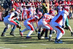 Gallery CIAC Football; Holy Cross vs. Wolcott - Photo # 1390