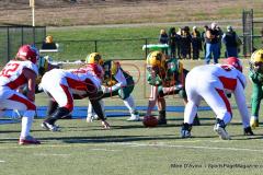 Gallery CIAC Football; Holy Cross vs. Wolcott - Photo # 1549